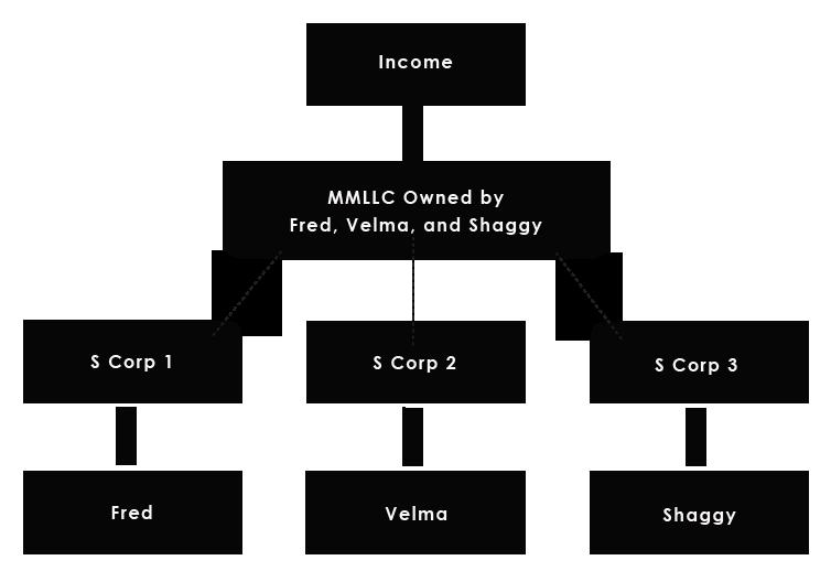 s corporation multi member llc