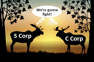 s corporation vs c corporation